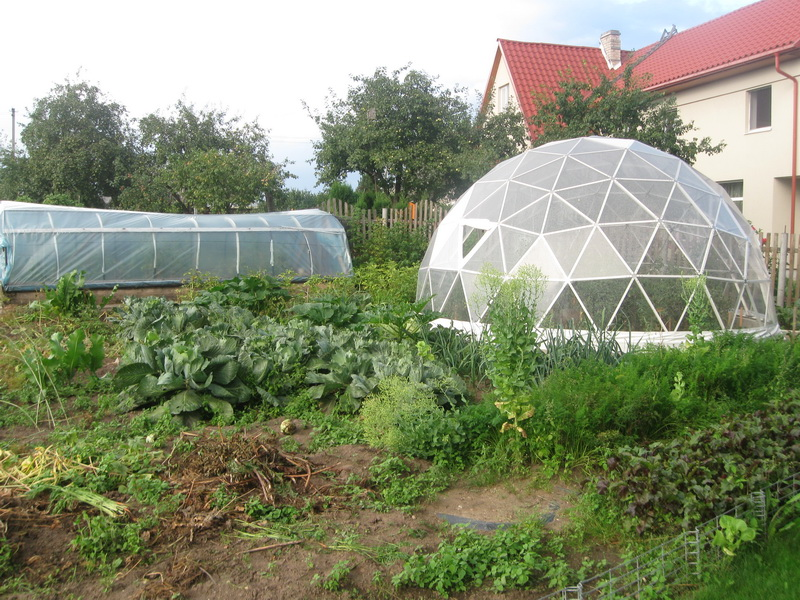 Geodesic Domes for Permaculture | Solar Domes, Greenhouses